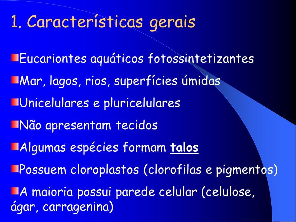 1. Características gerais