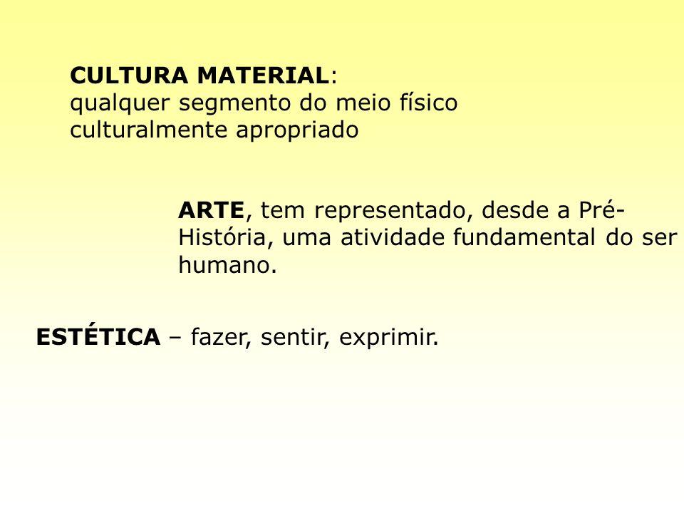CULTURA MATERIAL: qualquer segmento do meio físico culturalmente apropriado.
