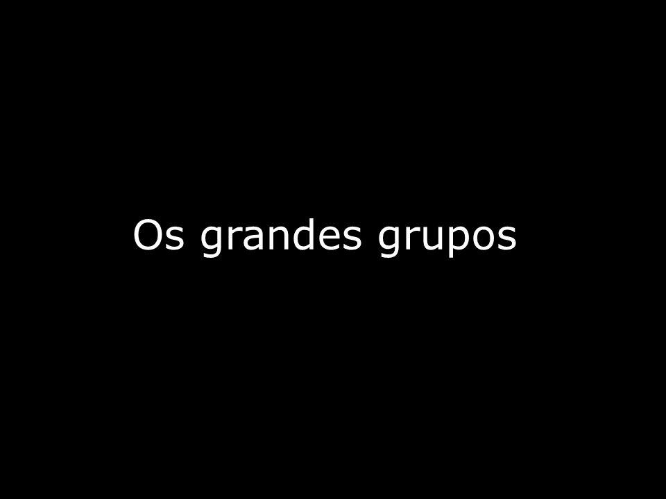 Os grandes grupos