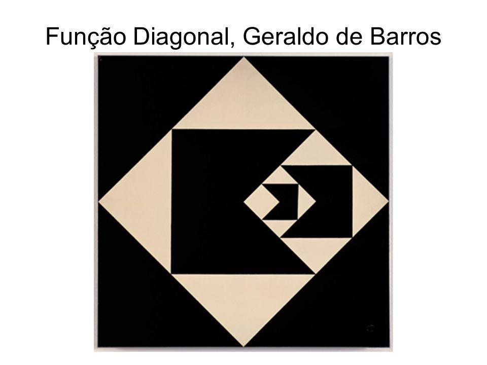 Função Diagonal, Geraldo de Barros