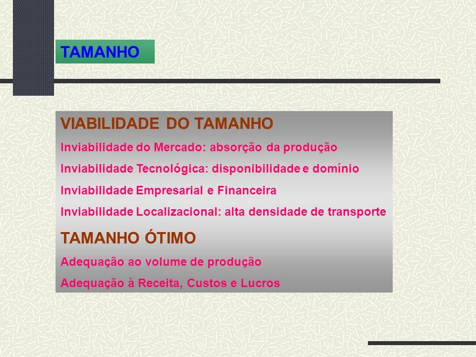 VIABILIDADE DO TAMANHO