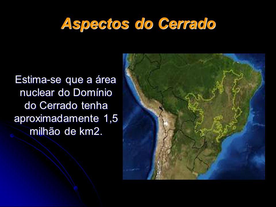 Aspectos do Cerrado Estima-se que a área nuclear do Domínio do Cerrado tenha aproximadamente 1,5 milhão de km2.