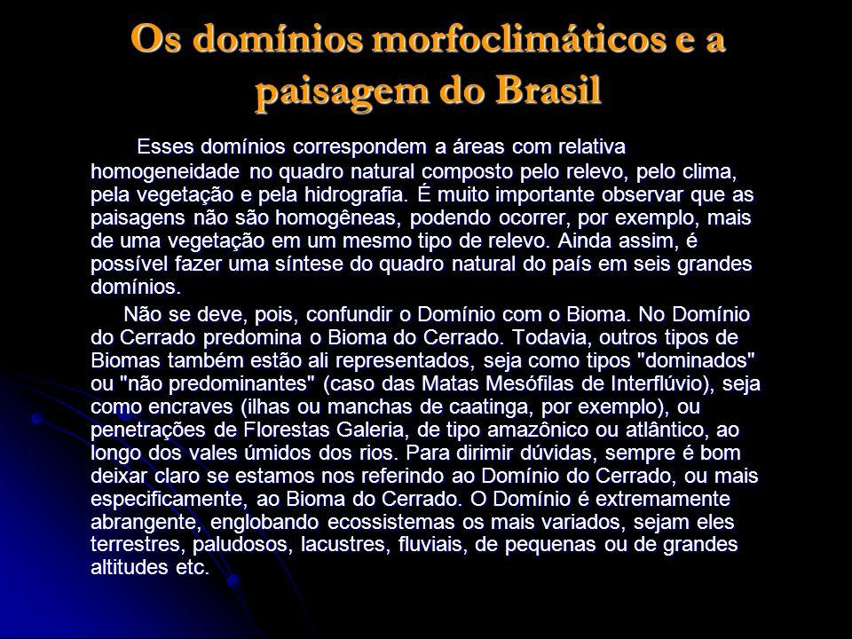 Os domínios morfoclimáticos e a paisagem do Brasil