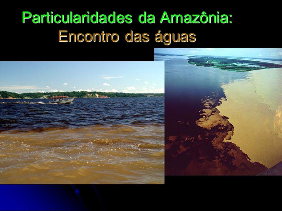 Particularidades da Amazônia: Encontro das águas