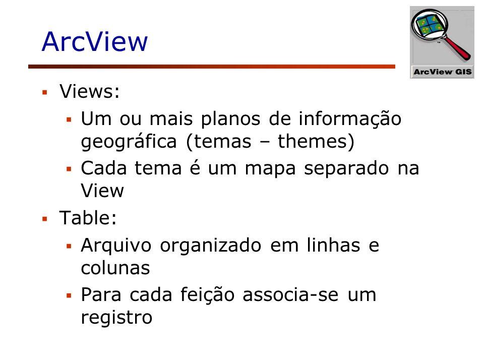 ArcView Views: Um ou mais planos de informação geográfica (temas – themes) Cada tema é um mapa separado na View.
