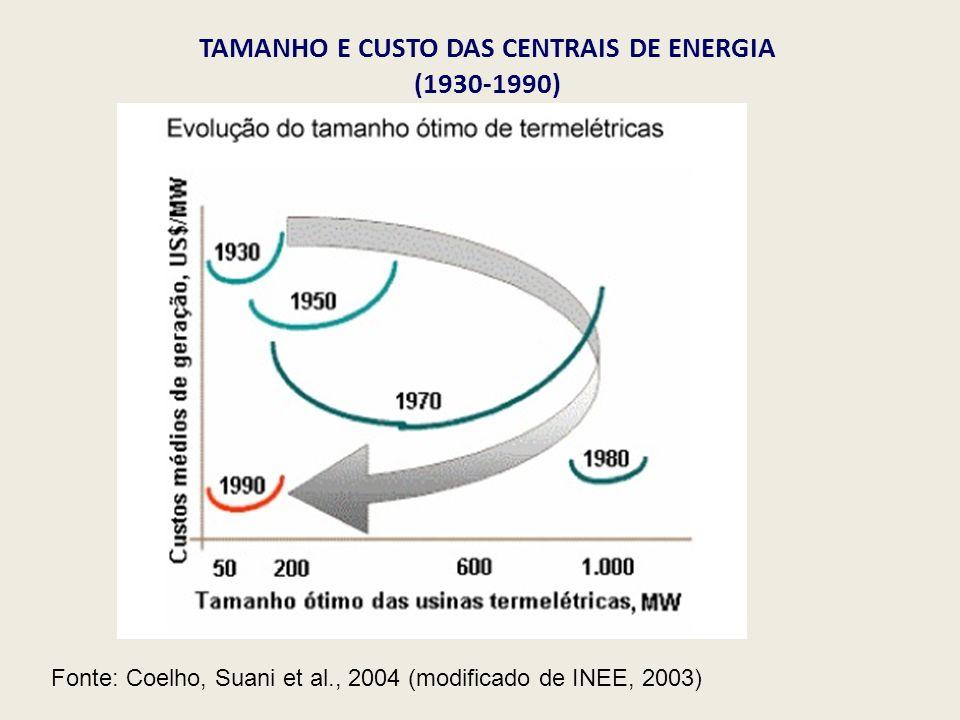TAMANHO E CUSTO DAS CENTRAIS DE ENERGIA (1930-1990)
