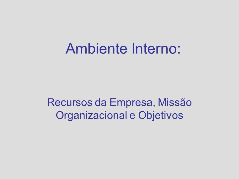 Recursos da Empresa, Missão Organizacional e Objetivos