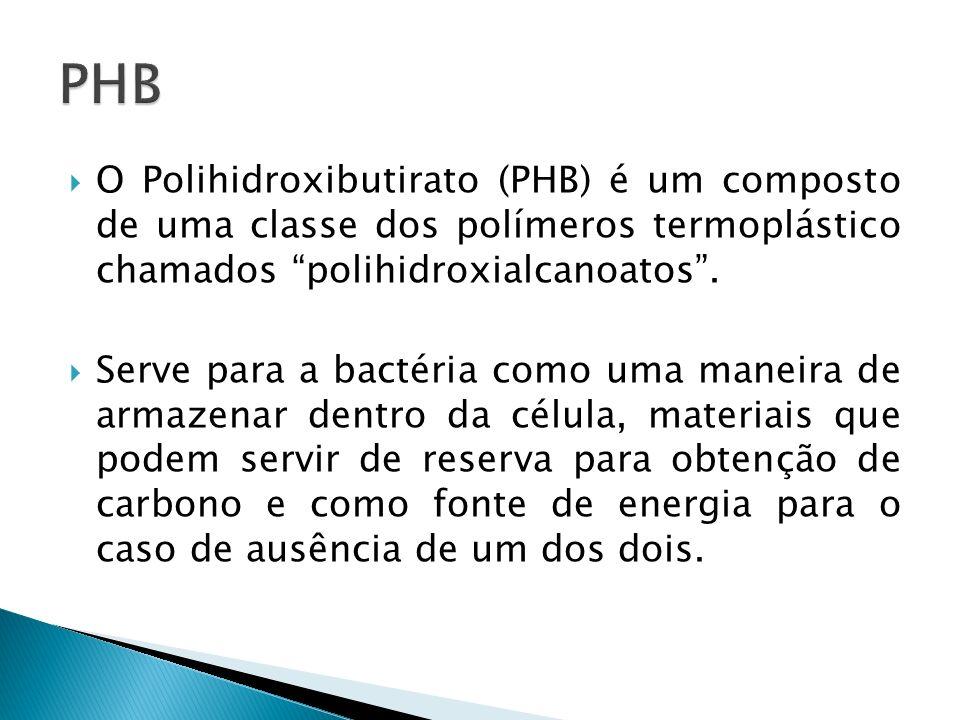 PHB O Polihidroxibutirato (PHB) é um composto de uma classe dos polímeros termoplástico chamados polihidroxialcanoatos .