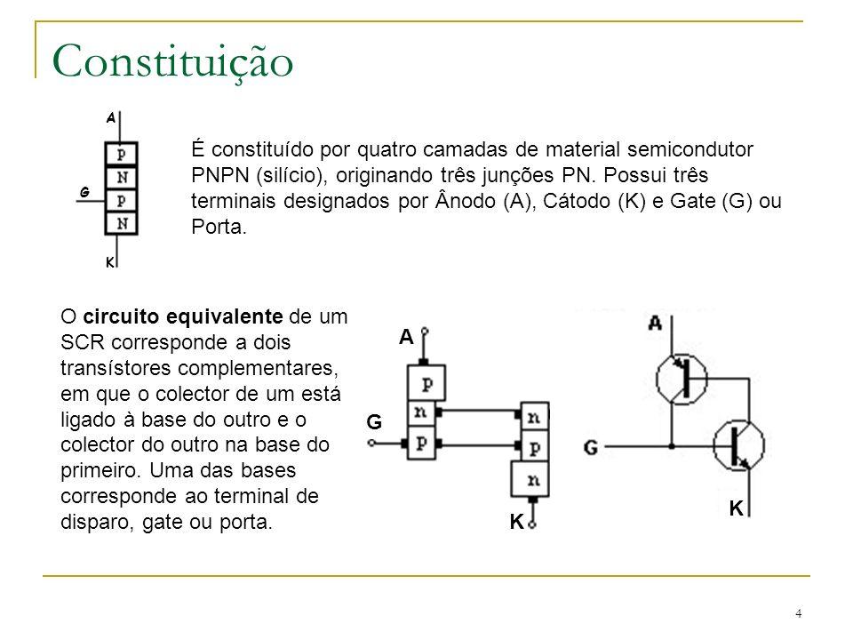 Constituição A. K. G.