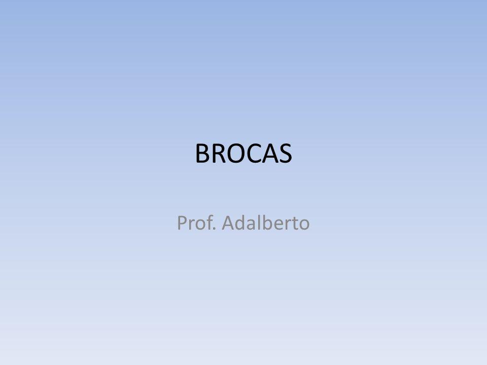 BROCAS Prof. Adalberto