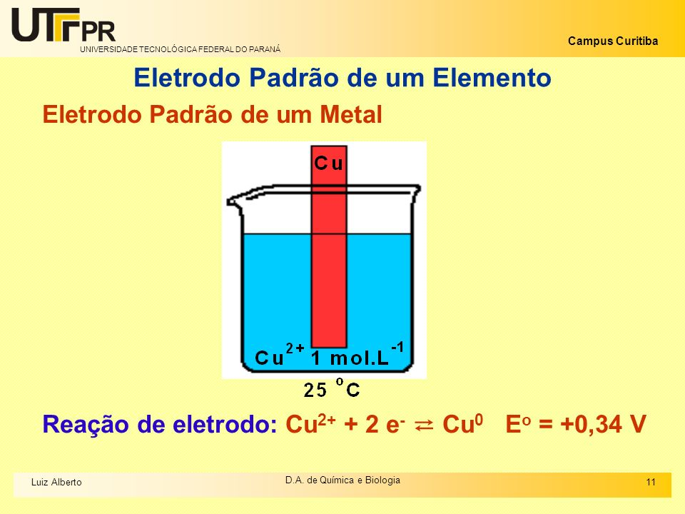 Eletrodo Padrão de um Elemento