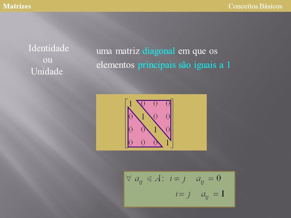 uma matriz diagonal em que os elementos principais são iguais a 1