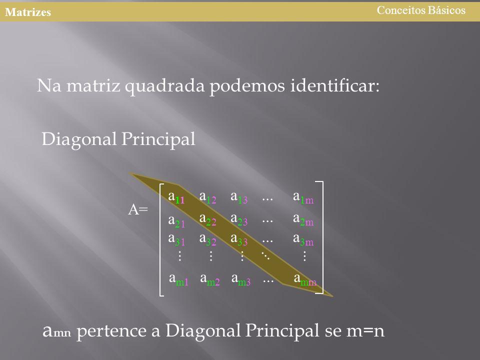 amn pertence a Diagonal Principal se m=n