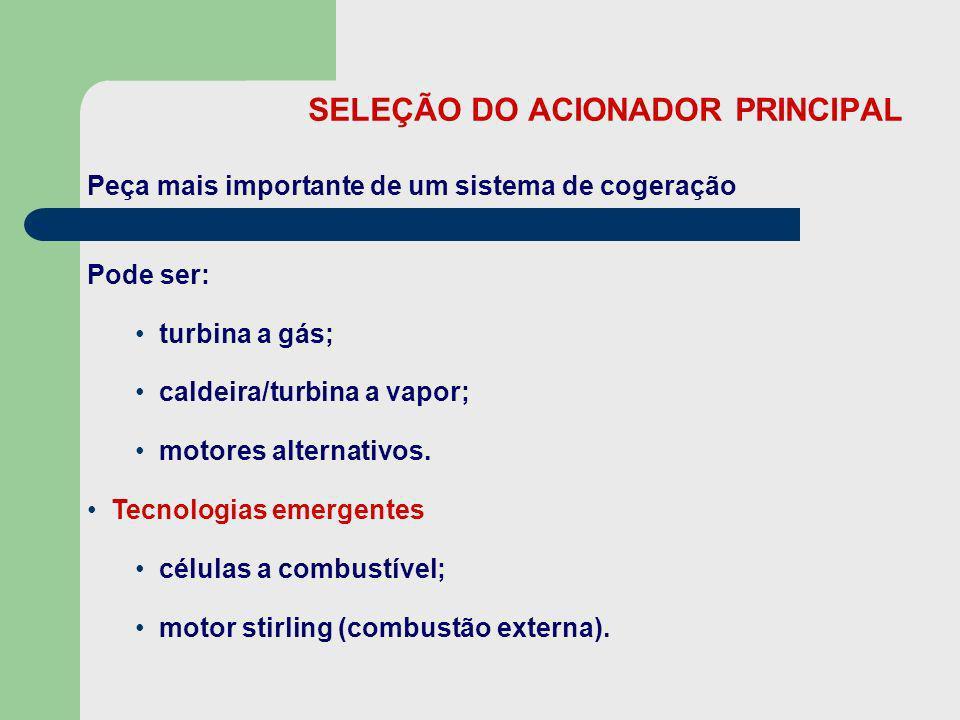 SELEÇÃO DO ACIONADOR PRINCIPAL