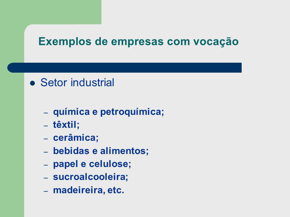 Exemplos de empresas com vocação