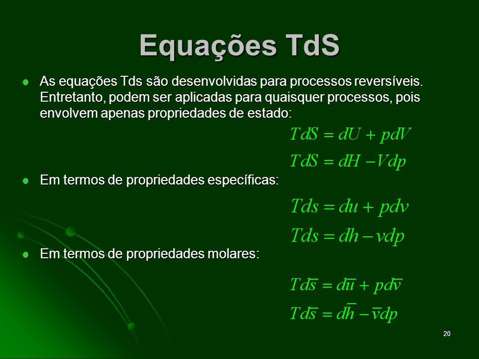 Equações TdS