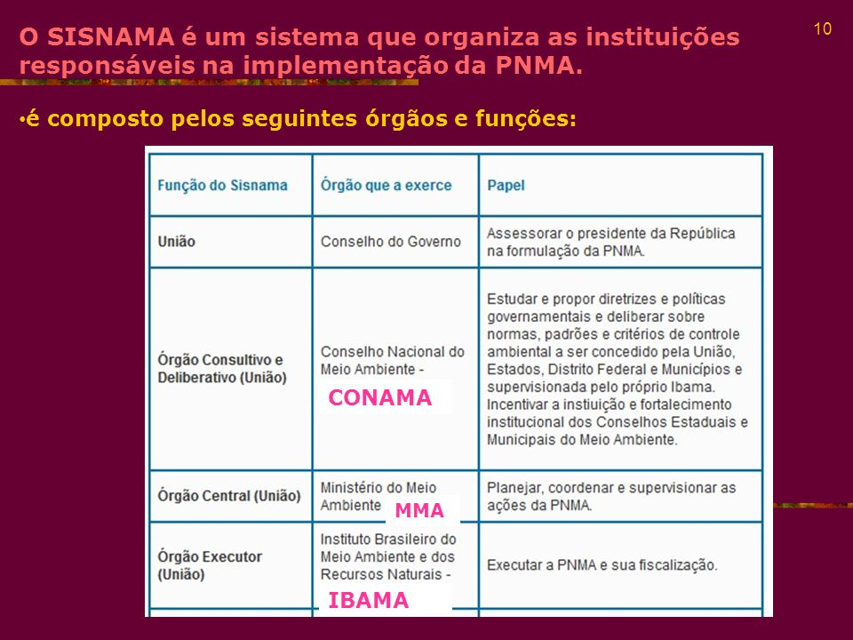 O SISNAMA é um sistema que organiza as instituições responsáveis na implementação da PNMA.