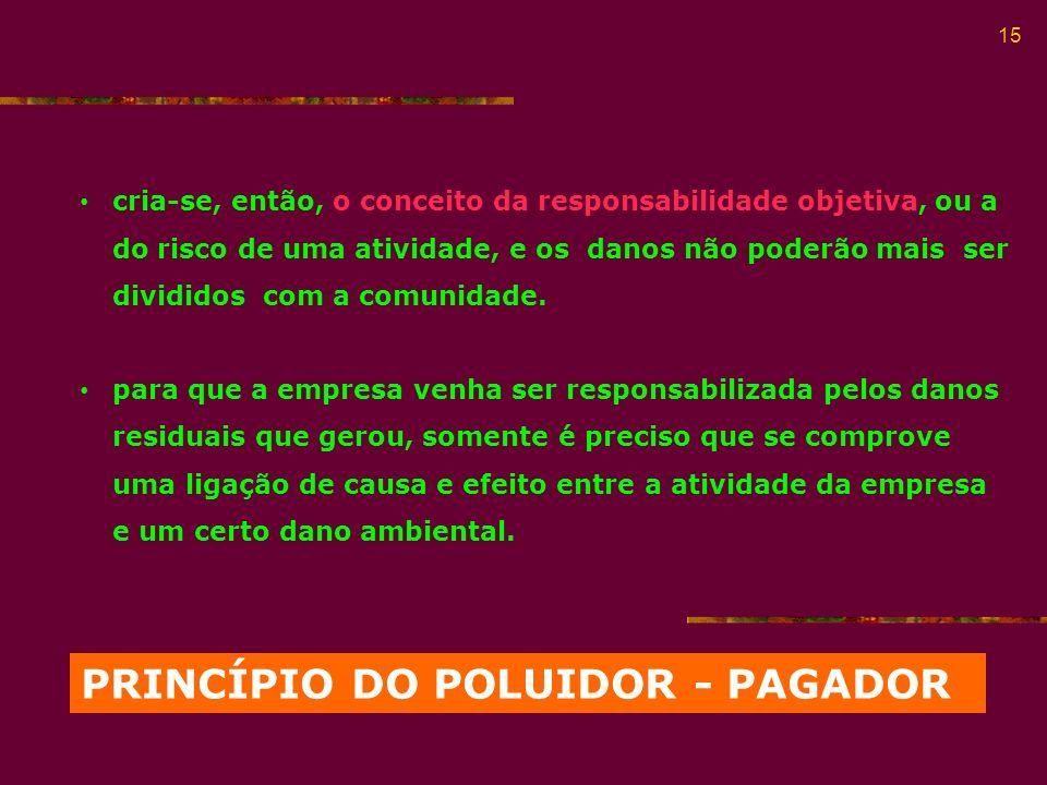 PRINCÍPIO DO POLUIDOR - PAGADOR