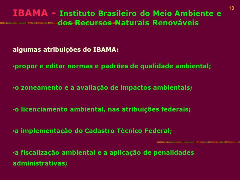 IBAMA - Instituto Brasileiro do Meio Ambiente e