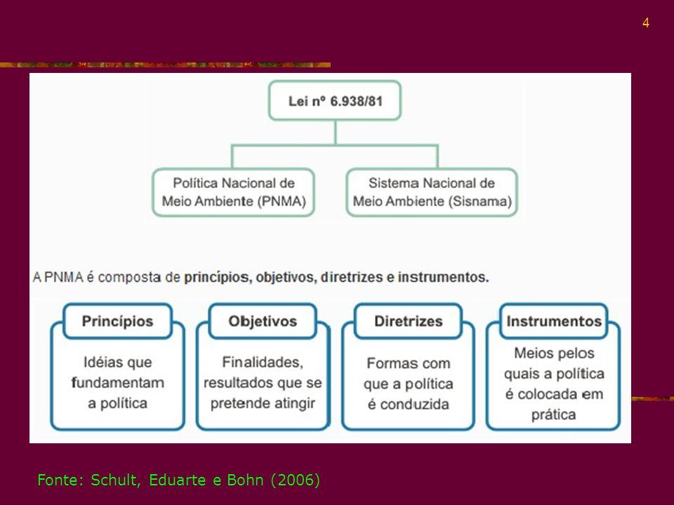 Fonte: Schult, Eduarte e Bohn (2006)