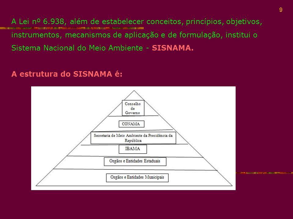 A Lei nº 6.938, além de estabelecer conceitos, princípios, objetivos, instrumentos, mecanismos de aplicação e de formulação, institui o Sistema Nacional do Meio Ambiente - SISNAMA.