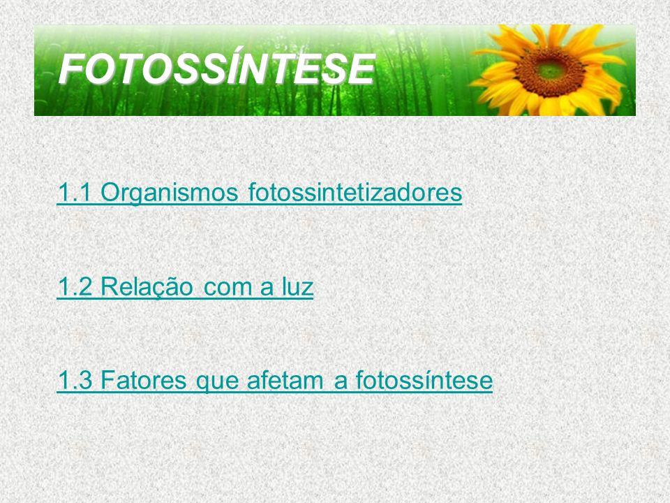 FOTOSSÍNTESE 1.1 Organismos fotossintetizadores 1.2 Relação com a luz