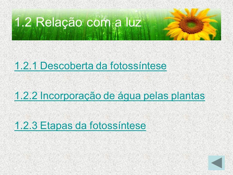 1.2 Relação com a luz 1.2.1 Descoberta da fotossíntese