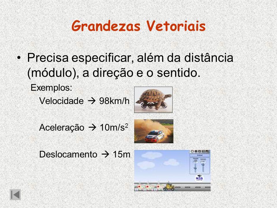 Grandezas Vetoriais Precisa especificar, além da distância (módulo), a direção e o sentido. Exemplos: