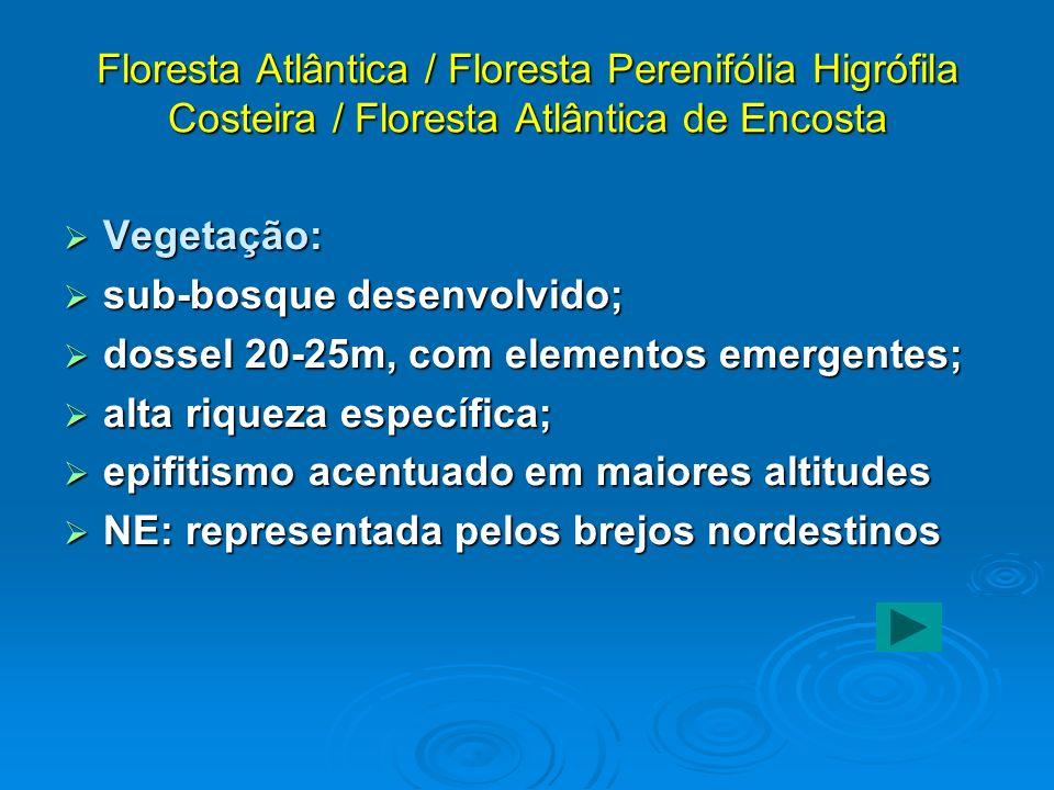 Floresta Atlântica / Floresta Perenifólia Higrófila Costeira / Floresta Atlântica de Encosta