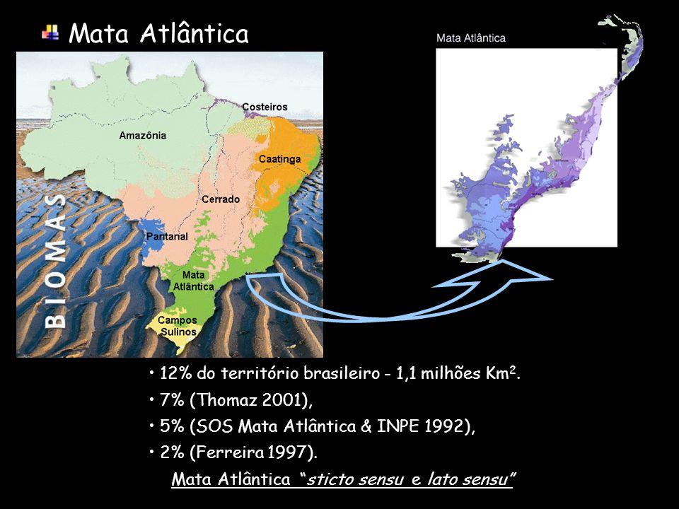 Mata Atlântica sticto sensu e lato sensu