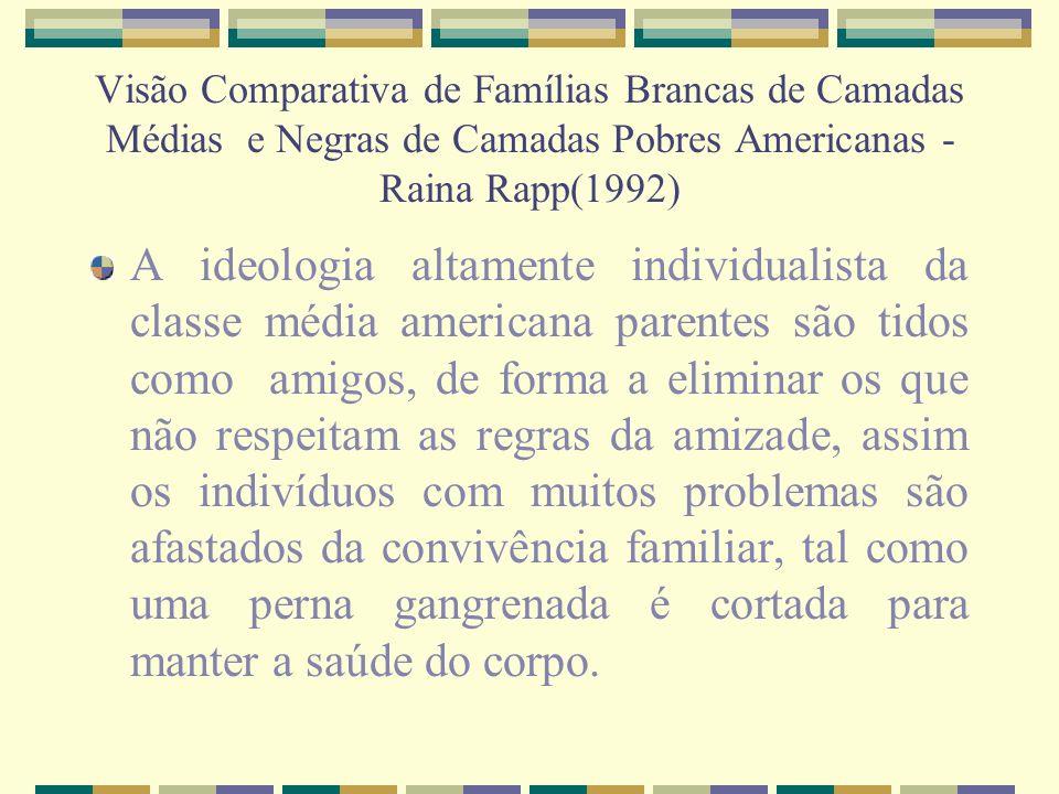 Visão Comparativa de Famílias Brancas de Camadas Médias e Negras de Camadas Pobres Americanas - Raina Rapp(1992)