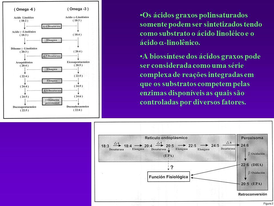 Os ácidos graxos polinsaturados somente podem ser sintetizados tendo como substrato o ácido linoléico e o ácido -linolênico.