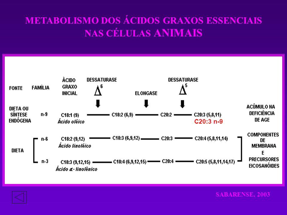 METABOLISMO DOS ÁCIDOS GRAXOS ESSENCIAIS NAS CÉLULAS ANIMAIS