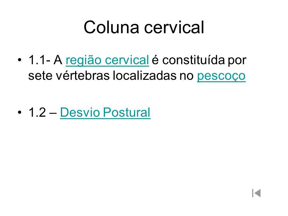 Coluna cervical 1.1- A região cervical é constituída por sete vértebras localizadas no pescoço.