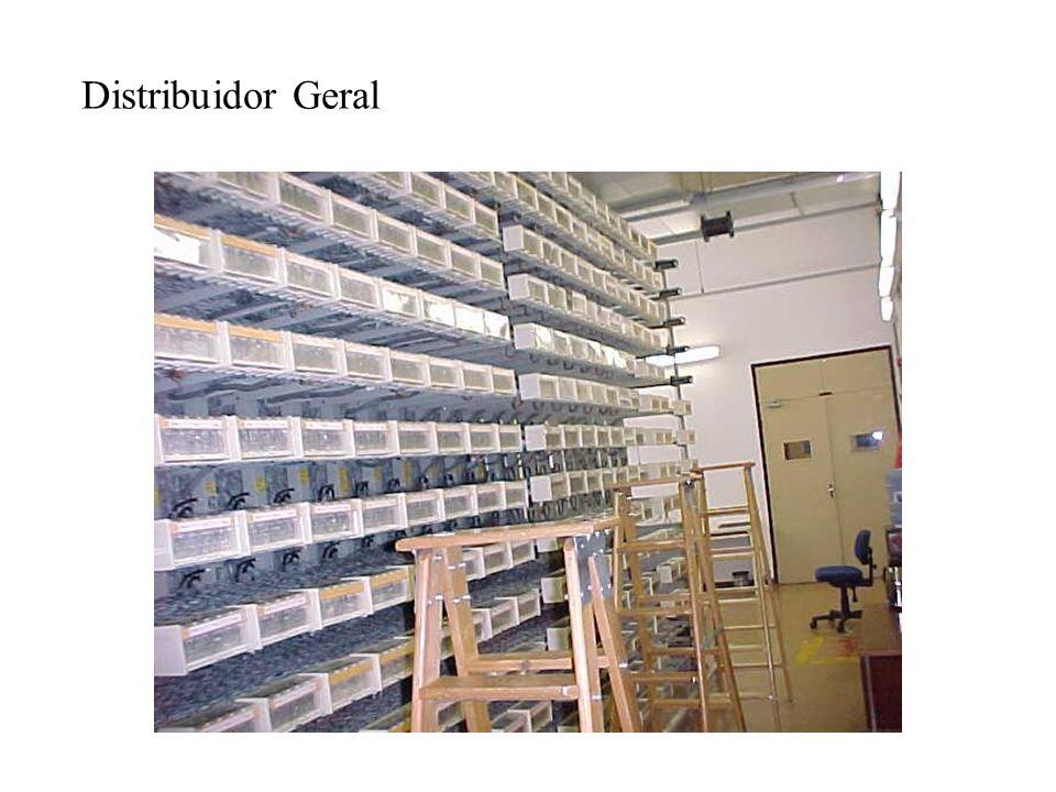 Distribuidor Geral