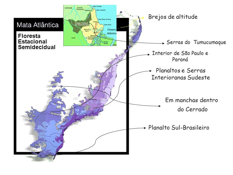 Planaltos e Serras Interioranas Sudeste