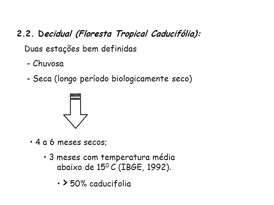 2.2. Decidual (Floresta Tropical Caducifólia):