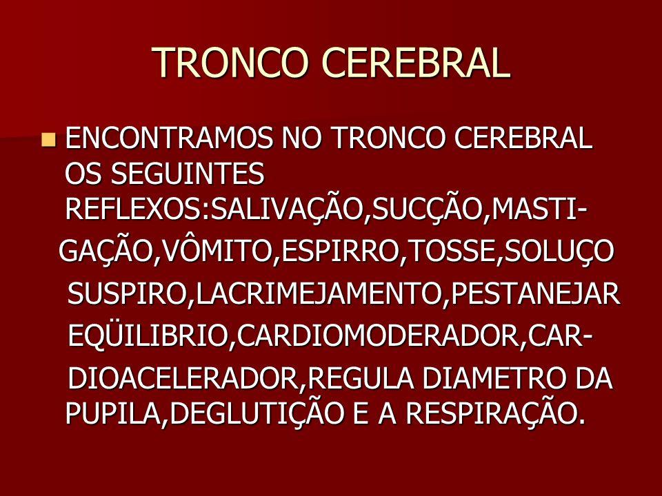 TRONCO CEREBRAL ENCONTRAMOS NO TRONCO CEREBRAL OS SEGUINTES REFLEXOS:SALIVAÇÃO,SUCÇÃO,MASTI- GAÇÃO,VÔMITO,ESPIRRO,TOSSE,SOLUÇO.