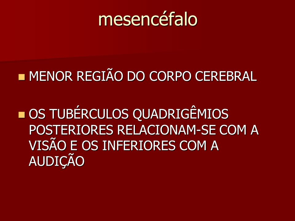 mesencéfalo MENOR REGIÃO DO CORPO CEREBRAL