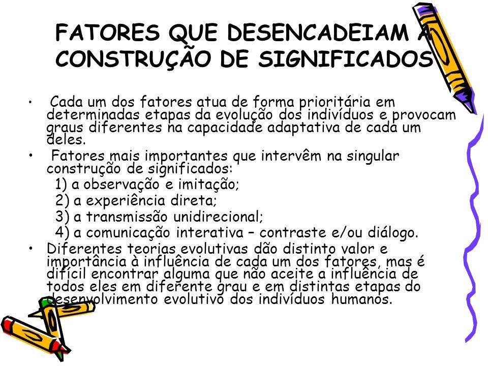 FATORES QUE DESENCADEIAM A CONSTRUÇÃO DE SIGNIFICADOS