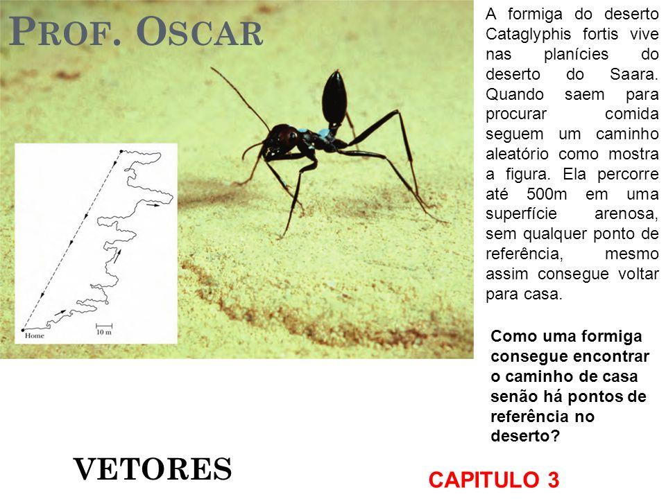 Prof. Oscar VETORES CAPITULO 3