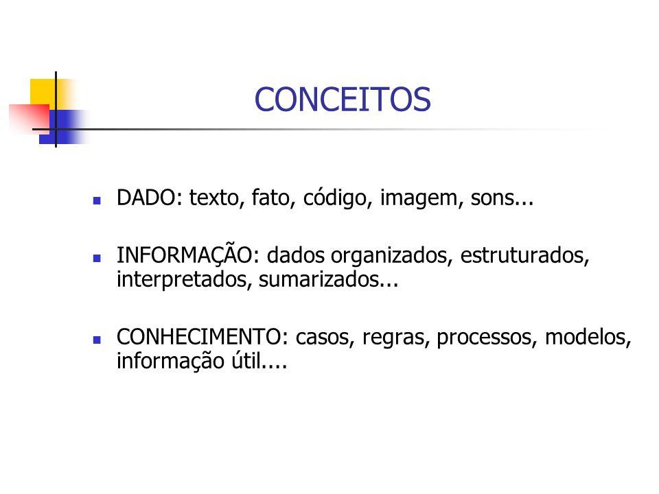 CONCEITOS DADO: texto, fato, código, imagem, sons...