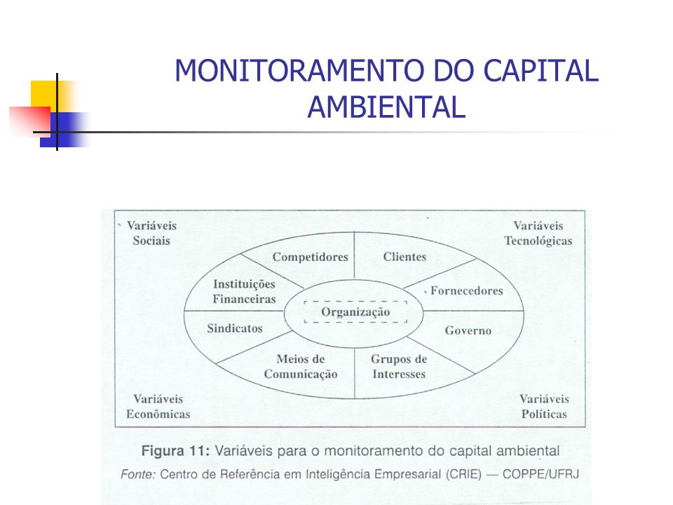 MONITORAMENTO DO CAPITAL AMBIENTAL