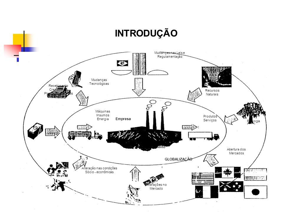 INTRODUÇÃO Empresa GLOBALIZAÇÃO Mudanças nas Leis e Regulamentação