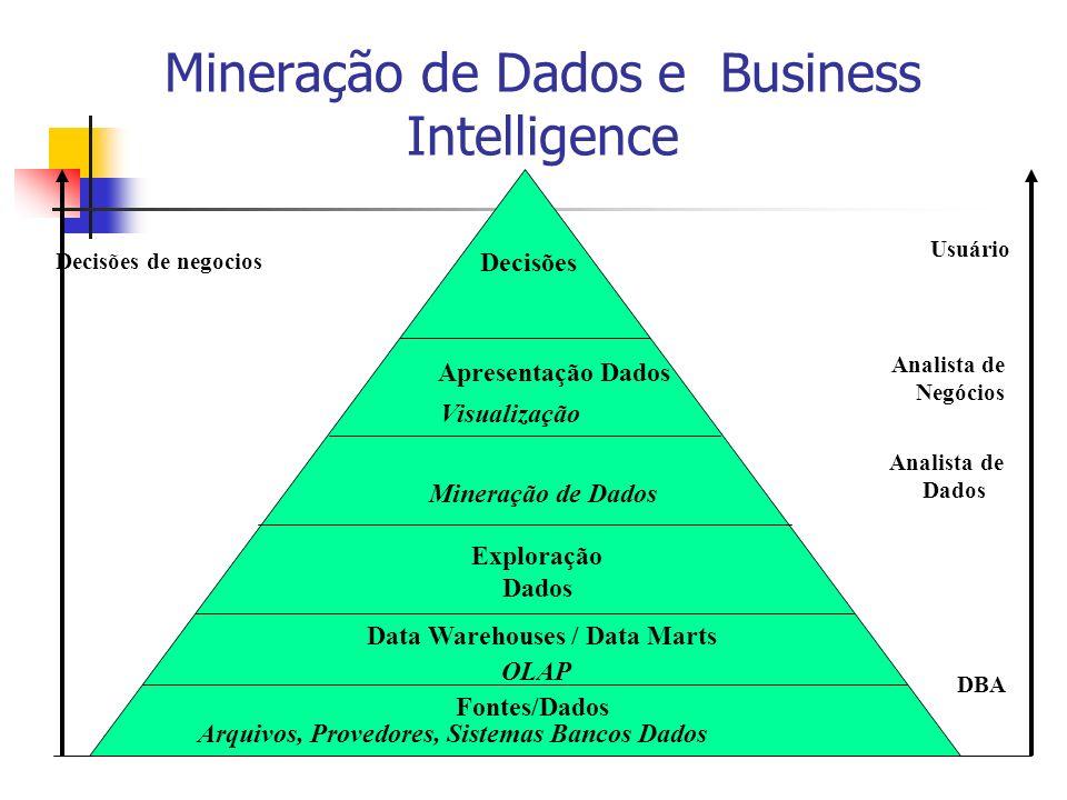 Mineração de Dados e Business Intelligence