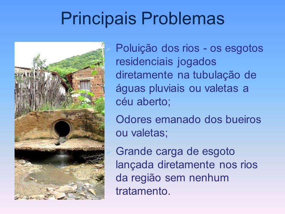 Principais Problemas Poluição dos rios - os esgotos residenciais jogados diretamente na tubulação de águas pluviais ou valetas a céu aberto;
