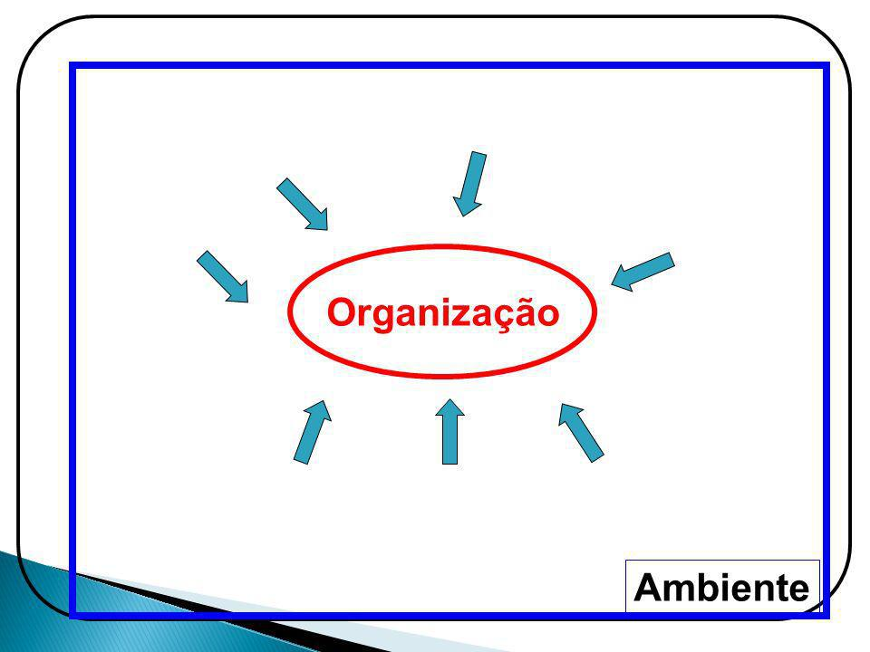 Organização Ambiente