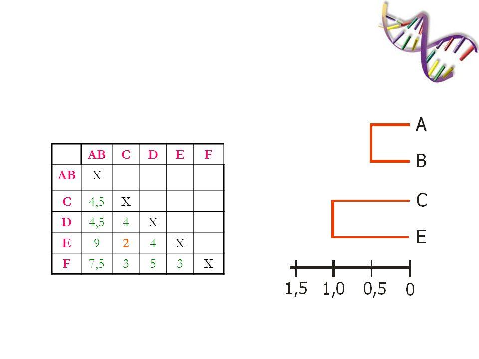 AB C D E F X 4,5 4 9 2 7,5 3 5