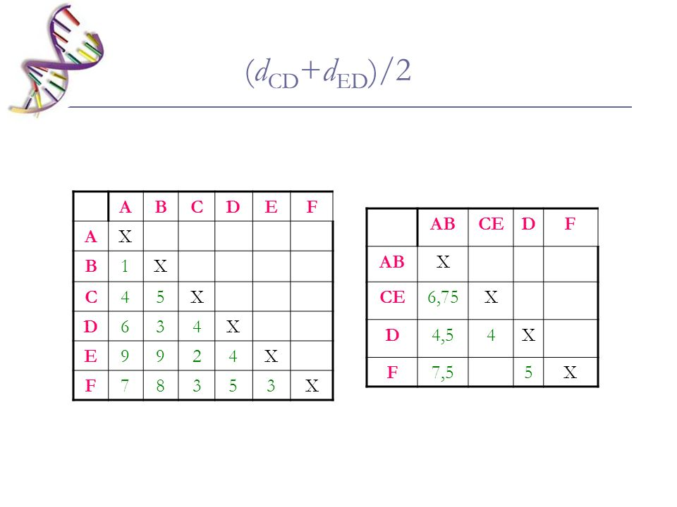(dCD+dED)/2 A B C D E F X 1 4 5 6 3 9 2 7 8 AB CE D F X 6,75 4,5 4 7,5