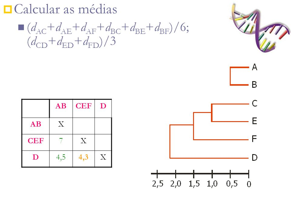 Calcular as médias (dAC+dAE+dAF+dBC+dBE+dBF)/6; (dCD+dED+dFD)/3 AB CEF